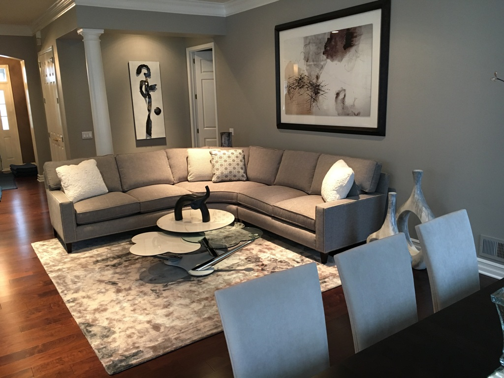 Living Room Designed By Sheryl Rothman