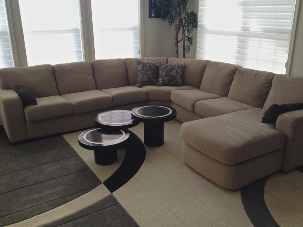 Living Room and Dining Room Designed by Sheryl Rothman