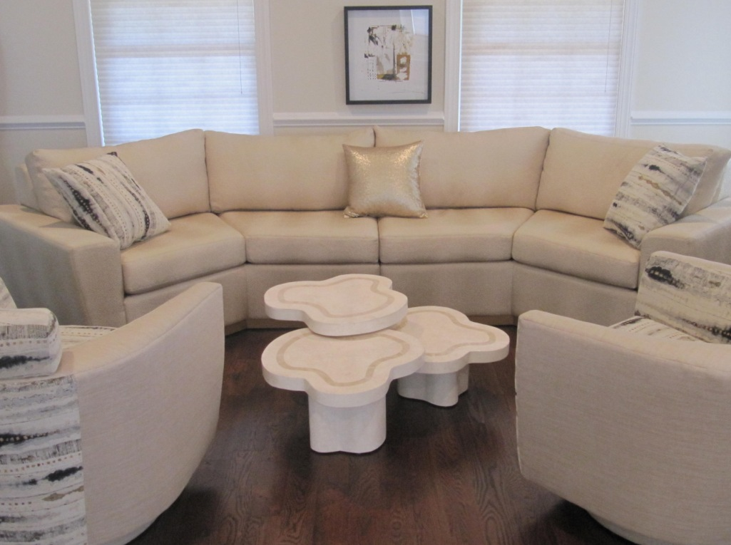 Living Room Project Designed By Sheryl Rothman